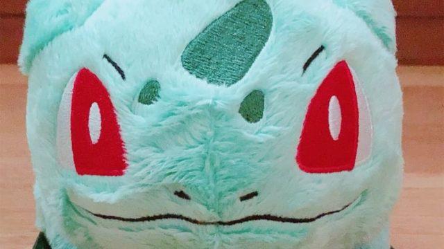 フシギダネの顔