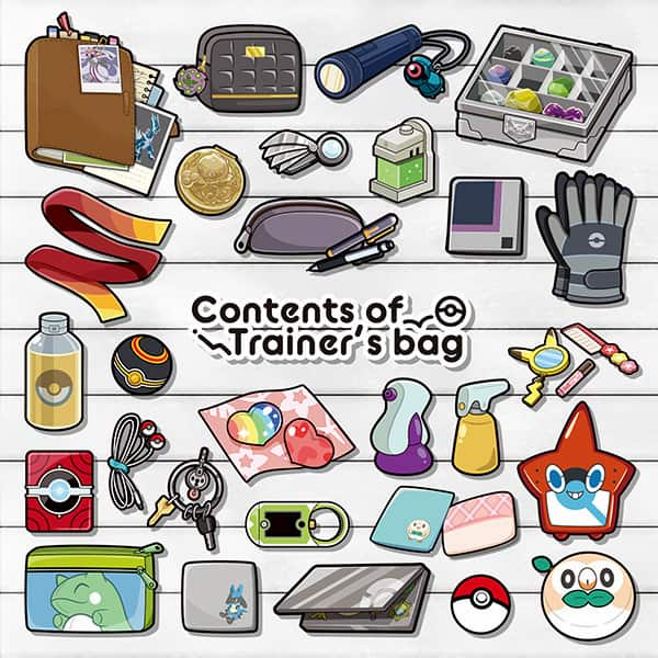 Contents of Trainer's bag